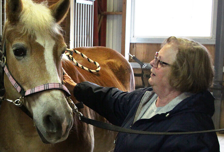 Older woman petting a horse